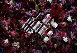 Erdem for NARS Strange Flowers koleksiyonu