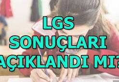 LGS sonuçları açıklandı LGS sonuç sorgulama | E okul giriş