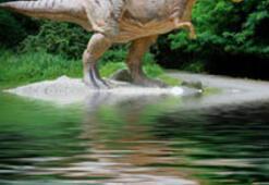 En büyük dinazor fosili bulundu