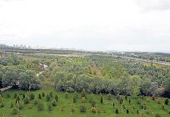 Milli Botanik Bahçesi 29 Ekim'de açılıyor