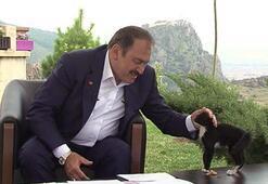 Bakan Eroğlu: Seçimden sonra bir karar verilecek