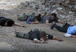 PKKya ağır darbeler O günlerde neler yaşanmıştı CNN Türkten özel dosya...