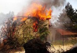 Son dakika: Bursada yangın Uludağ eteklerinde alevler yükseldi