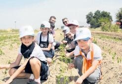 Çocuklara toprağın değeri anlatılıyor