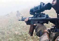 Son dakika: İşte PKKnın 20 yılda Türkiyeye zararı...