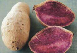 Mor patates kansere karşı