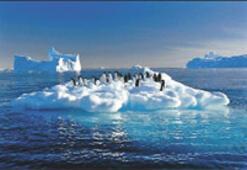 2030'da buzul kalmayacak