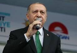 Cumhurbaşkanı Erdoğandan İnceye: Yalancı olmaya mecbur musun