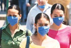 Türkiye'nin domuz gribi bilançosu: 411 kişi