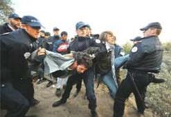 Fransız polisi 'cangıl'ı bastı