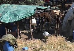 Yer: İzmir Bu çadırın içinde inanılmaz bir hayat var