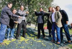 Türkiye zeytinde dünya lideri olacak, fiyat bizden sorulacak