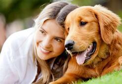 Köpeğinizi sakinleştirmek için 8 doğal yöntem