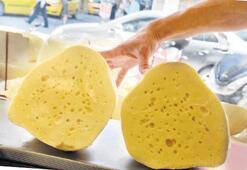 Peynirimiz dışa açılıyor