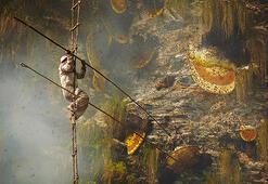Nepalin korkusuz bal avcıları