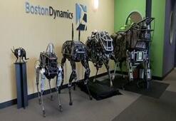 Bu Robotlar Görenleri Hayrete Düşürüyor