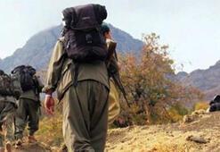 Son dakika İçişleri Bakanlığı açıkladı 24 terörist...