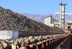 Erzurum ile Erzincan şeker fabrikaları ihalelerinin kazananı belli oldu
