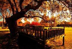 Cennet bahçesi: Saklıköy
