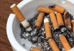 Sigara içen birinin akciğeri nasıl görünüyor