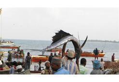 Zanzibar gezi rehberi