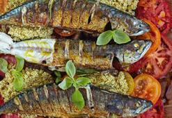 Domates ve kinoa salatalı uskumru balığı