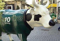 İzmir'i inekler basacak