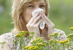 Alerjik nezle nasıl anlaşılır