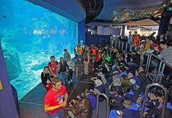 Dünya Çocukları İstanbul Akvaryum'da