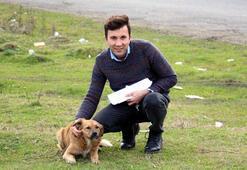 Zonguldakta bir öğretmen, köpek katliamını belgeledi