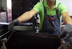 Zeytinyağı çıkarmada binlerce yıllık taş baskı geleneği sürüyor