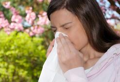 Mevsimsel allerjik rinit: Bahar nezlesi
