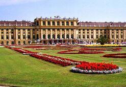 Viyana'da nereleri görmeli Viyana'da neler yapmalı