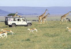 Safarinin adresi Tanzanya