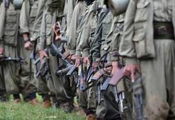 Milli Eğitim müdürlüklerini işgal talimatı terör örgütü PKK raporunda