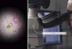 Googleın Artırılmış Gerçeklik mikroskobu kanserli hücreleri hızla öne çıkarıyor