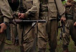 Terör örgütü PKKnın siyasi parti oyunu deşifre oldu