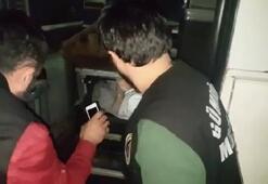 Kaçaklar otobüsteki gizli bölmede yakalandı