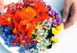 Sevgiliye yenilebilir çiçek Lüks restoran ve 5 yıldızlı oteller peşinde…