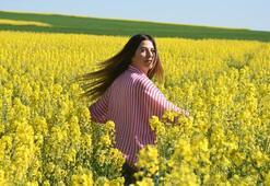 Kanola tarlaları, Trakyayı sarıya boyadı