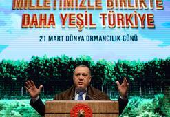 Cumhurbaşkanı Erdoğandan peş peşe kritik açıklamalar