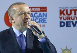 Cumhurbaşkanı Erdoğan: Diriliş harekatı yeniden başladı