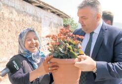 Ayşe Teyze'nin çiçeği, Başkan Ergün'e ulaştı
