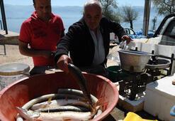 Balıkçılar turnayı gözünden vurdu