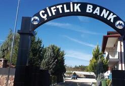 Çiftlik Bank soruşturmasında 4 kişi tutuklandı