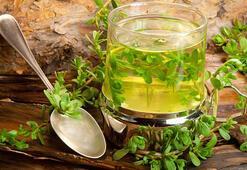 Ramazanda bitki çayı tavsiyeleri