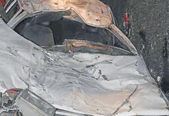 Ehliyetsiz sürücü tilki kazası yaptı