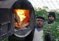 Antalyada üreticinin don nöbeti Sabaha kadar başında beklediler