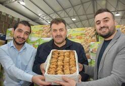 Suriyeli 3 mühendis incir patronu oldu