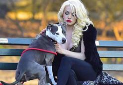 Courtney Stodden bu halde köpek gezdirdi